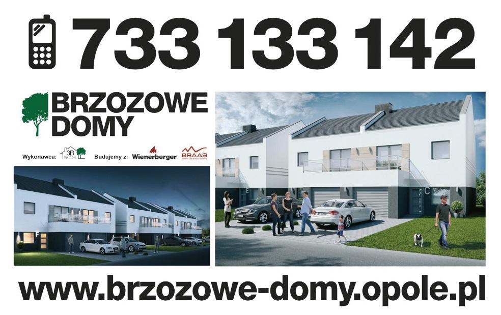 brzozowe-domy-reklama