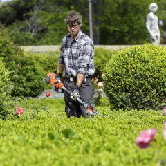 Sposoby na piękny trawnik