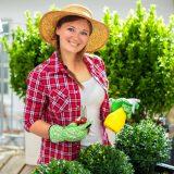 Pielęgnacja roślin balkonowych